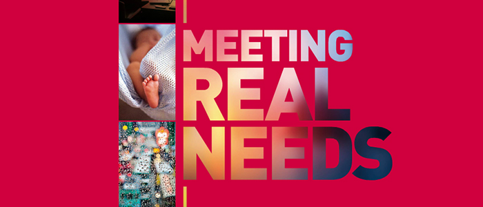 2013 Annual Report - Meeting Real Needs